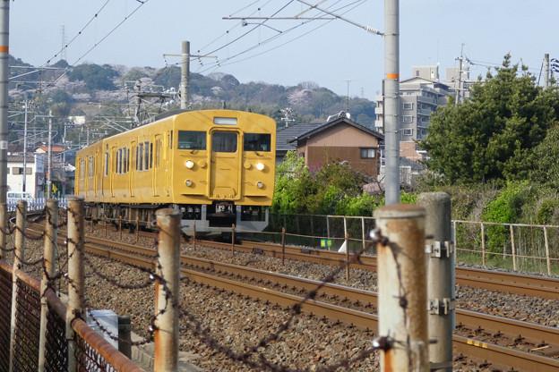 TZ85_rensha01