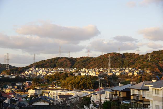 Photos: 02_シーンモード風景