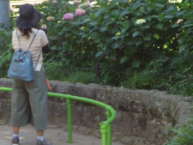撮影@さっそく180522