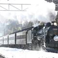 写真: 雪映えのレトロ列車