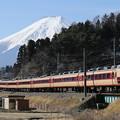 写真: 早春の富士を背に