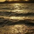 荒れる水面