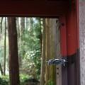 写真: 山寺散策