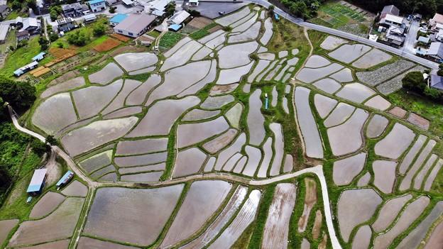 Photos: 棚田上空