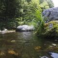 写真: 渓谷でのひととき