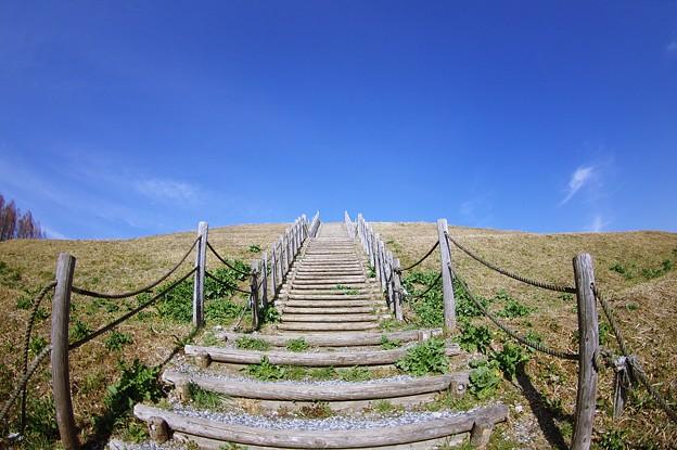 丘の向こう