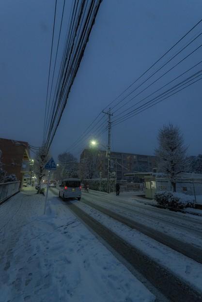 写真: 雪景色@桶川