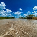 写真: 台風12号で荒れる荒川@桶川