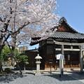 写真: 壬生寺