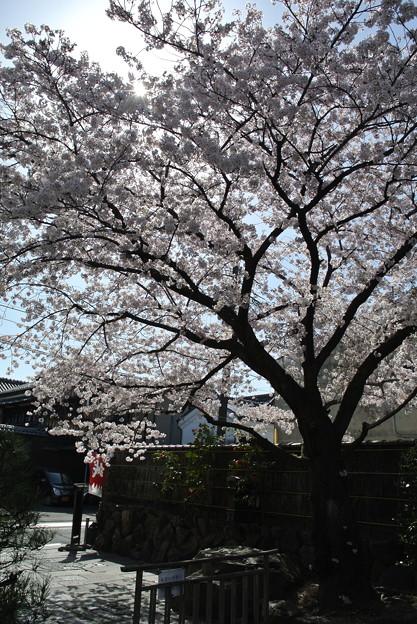 写真: 壬生/八木邸