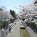写真: 二条城堀川