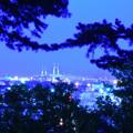 写真: 港の見える丘公園より 3