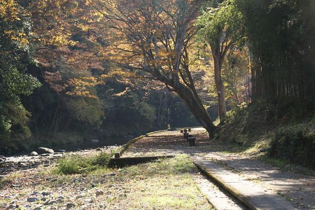 武茂川の流れ