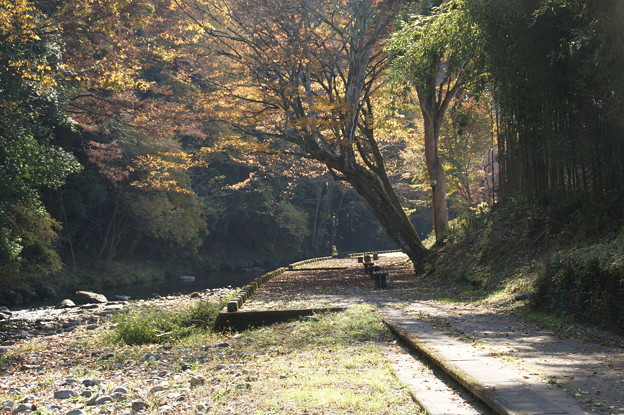Photos: 武茂川の流れ