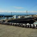 Photos: 伊吹島