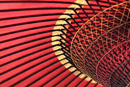 2009.03.21 鶴岡八幡宮 神苑 牡丹庭園 野天傘