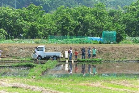 2014.05.31 追分市民の森 田植体験