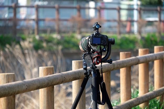 2016.03.23 和泉川 Canon EOS 7D 重装備