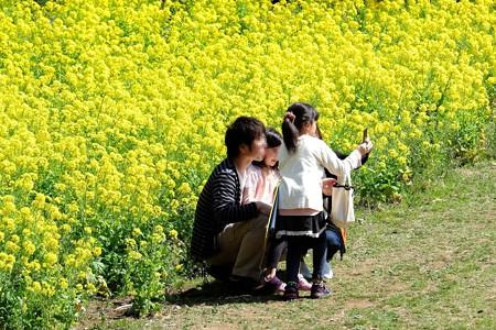 2016.03.27 追分市民の森 菜の花を楽しむ会