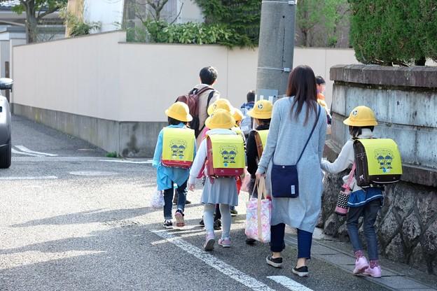2016.04.07 新潟 姫 登校