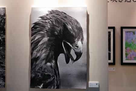 2018.03.02 CP+2018 印刷用紙 和紙と鷲