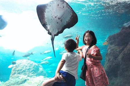 2018.07.27 新江ノ島水族館 エイト交流
