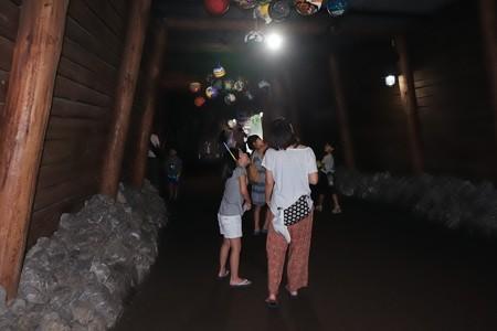 2018.08.04 ナイトズーラシア トンネル