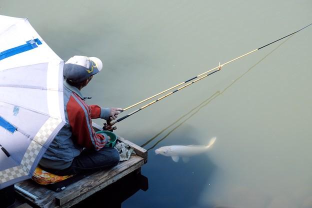 2018.10.02 和泉川 釣り人と鯉