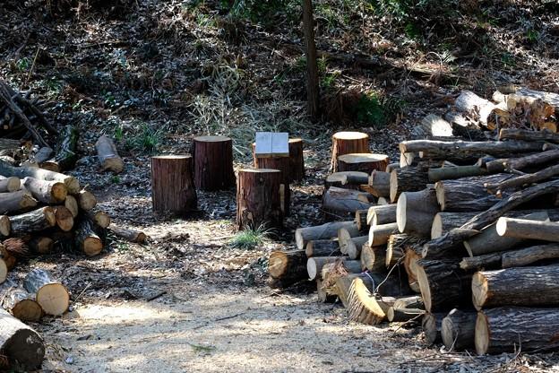 2019.03.17 追分市民の森 森保全の仕事 休憩所