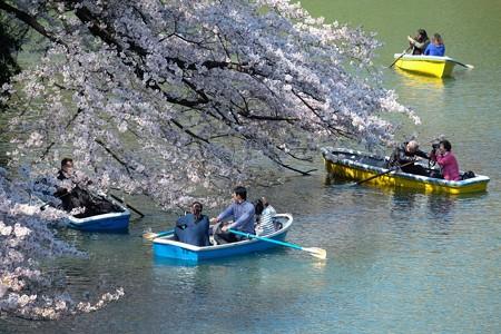 2019.04.04 千鳥ヶ淵 さくら愛でるボート