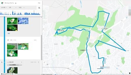 2019.05.29 散歩コース 森道