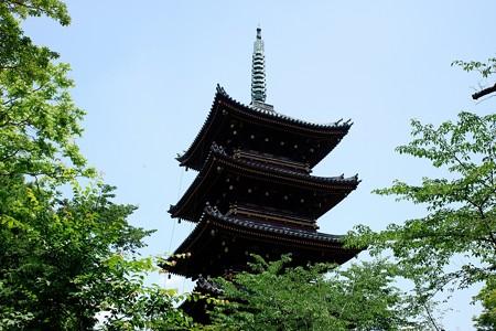 2019.05.30 上野公園 旧寛永寺五重塔