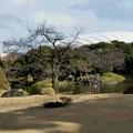 小石川後楽園-1
