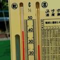 写真: 炎天下の温度は
