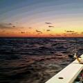 写真: ヒラメ釣り