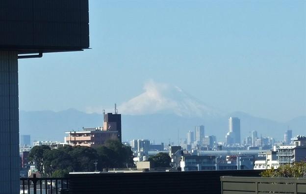 昨日の富士山