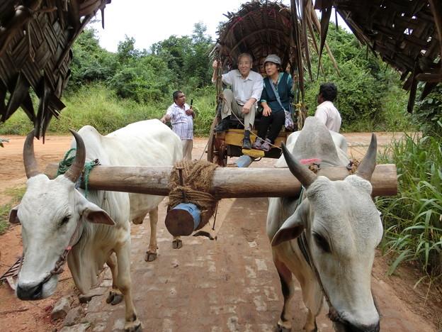 写真: 村の生活