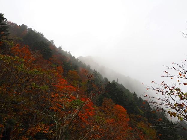 西日本最高峰の紅葉
