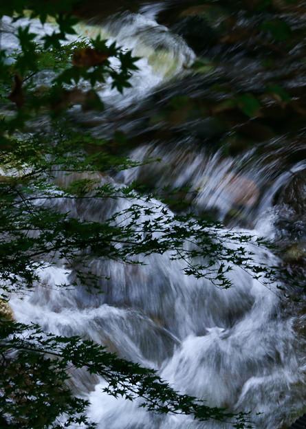秋近まる川の流れ