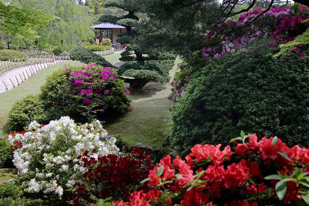 Photos: 城南宮 桃山の庭