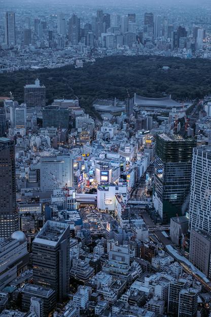 写真: 渋谷区