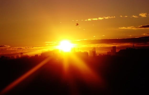太陽の彼方に