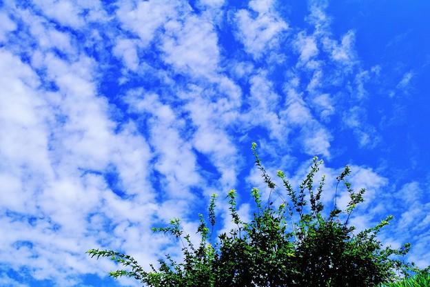 空への憧れ