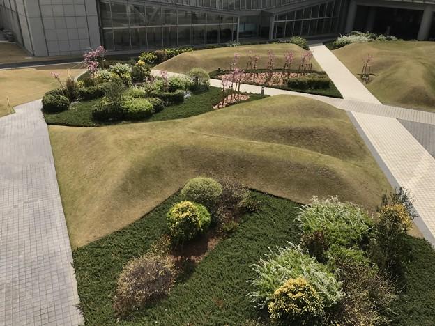 東京国際展示場の中庭