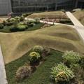 Photos: 東京国際展示場の中庭