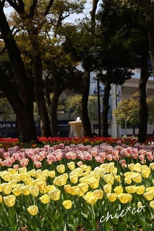 横浜公園-186