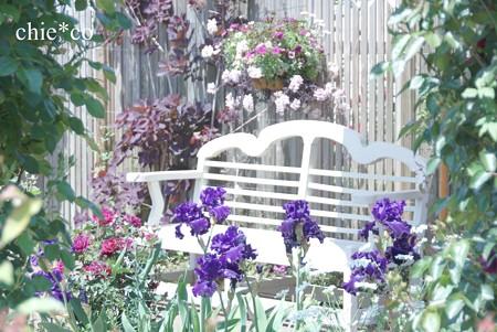 横浜 English Garden-086