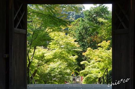 北鎌倉-269