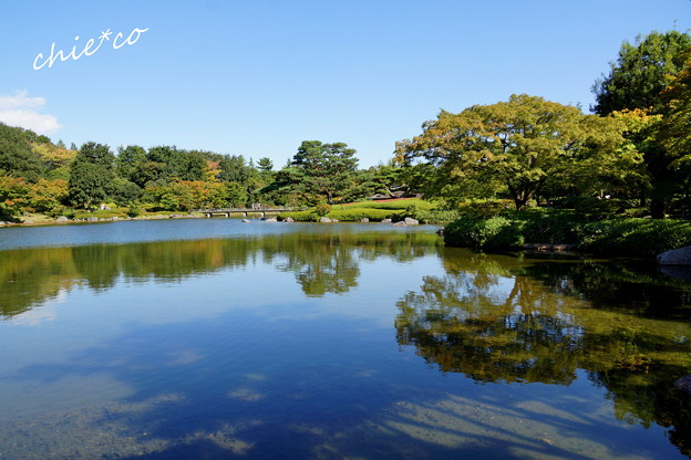 昭和記念公園-416