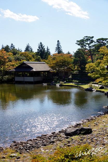 昭和記念公園-417